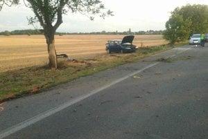 Auto skončilo v poli.
