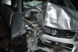 V súvislosti s touto dopravnou nehodou prebieha vyšetrovanie vo veci prečinu ohrozenia pod vplyvom návykovej látky.