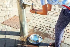 Na Námestí osloboditeľov v Liptovskom Mikuláši slúži pitná fontána aj psíkom.