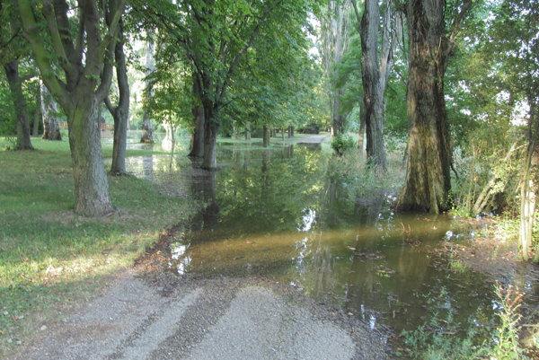 Časť parku znovu zatopilo.