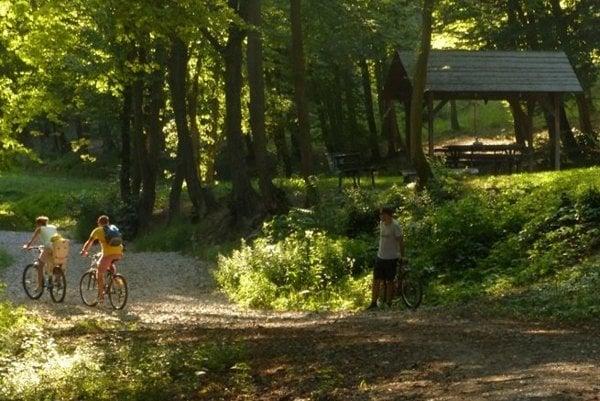 Návštevníkov lákajú na Borkút najmä cyklistické možnosti a rôzne altánky v prírode, ako aj minerálne pramene.