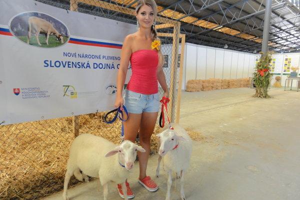 Marienka a Janko, jahniatka nového plemena oviec.
