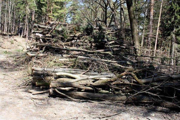 Kúpele Bojnice stromy nad kalváriou vyrúbali bez vedomia mesta.