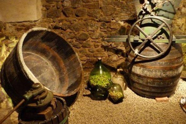Z malého múzea vína.