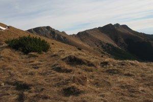 Južná časť hrebeňa Belianskych Tatier.