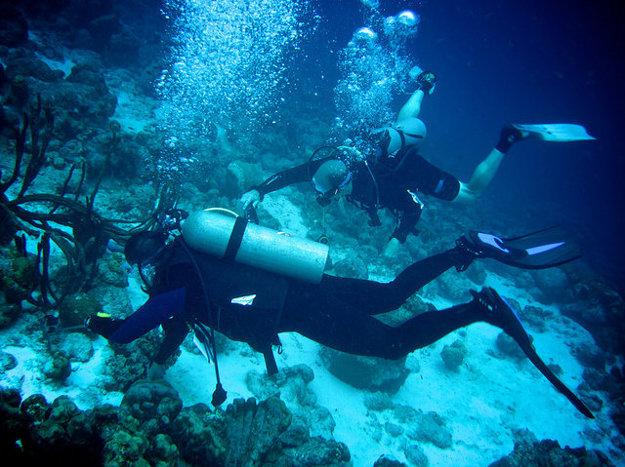 Skupinové alebo individuálne potápanie organizujú miestne potápačské centrá.