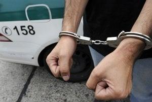 Za podobný  čin  ho už v minulosti odsúdili, teraz môže ísť  do väzenia na šesť mesiacov až tri roky.
