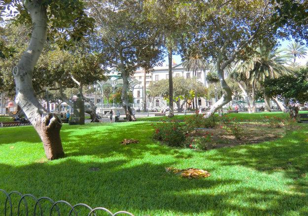 Park San Telde v Las Palmas