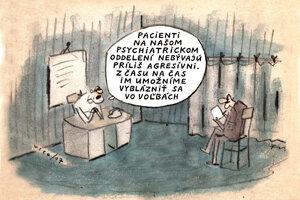 Voľby sú najlepší liek (Vico)