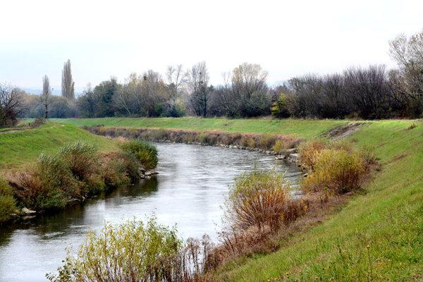 Zeleň pri Hornáde. Stromy a kry z okolia rieky zmiznú, náhradnú výsadbu odobrili úradníci namiesto mesta v lese.