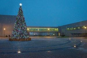 Umelý vianočný stromček v areáli závodu Kia.