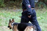 Policajný psovod.