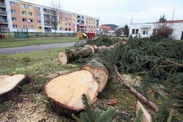 Nedávny výrub stromov pri škôlke v Slovenskej Ľupči jedného z obyvateľov nahneval. Obrátil sa s podnetom na inšpekciu.