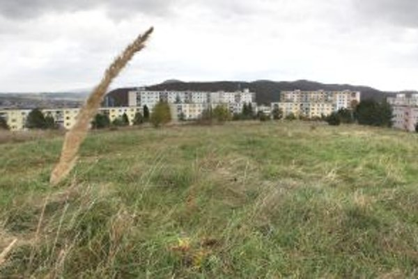 Petičný výbor sa obrátil na prokuratúru, aby preskúmala postup mesta v súvislosti s informovaním o budúcej výstavbe nad Tulskou, Oremburskou a Moskovskou ulicou