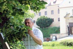 Ján Papco privoniava kvetom lipy.