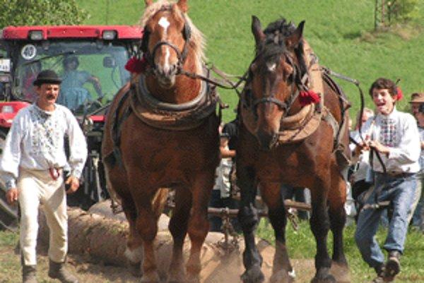 Furmanské súťaže sú náročné nielen pre kone ale aj pre samotných furmanov.