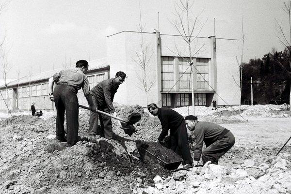 Na archívnej snímke z 30. apríla 1954 v Bratislave budovatelia Parku kultúry a oddychu.