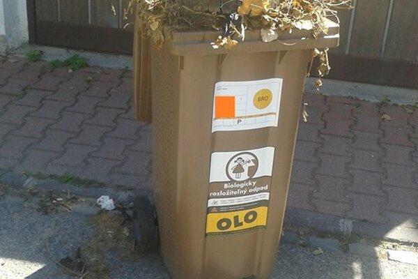 Aj takéto kusy kmeňov sa v minulom roku objavili v nádobách na bioodpad.