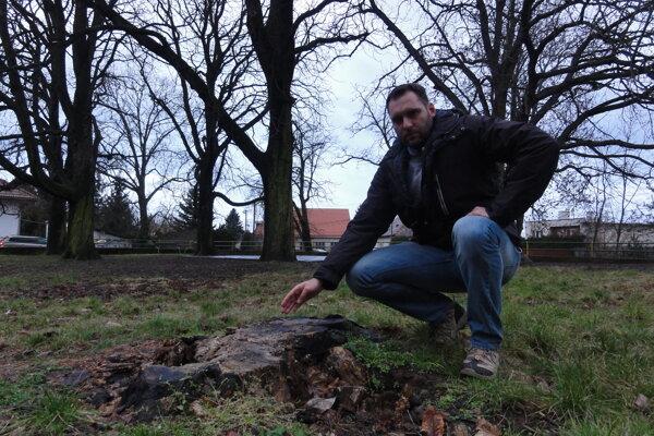 Poslanec Marek Holub na mieste, kde vlani v lete vyvalilo storočný strom. Na problém nestabilných gaštanov upozorňuje poslanec mesto už od vlaňajšieho apríla. Bez výsledku.