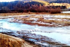 Kríky spílili ochranári. Konáre však zatiaľ pre hrubý ľad celkom odpratať nemohli.