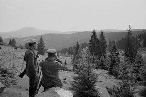 Na archívnej snímke z 21. júna 1963 Dobročský prales. Dobročský prales v chotári obce Čierny Balog okres Banská Bystrica je najstaršou prírodnou rezerváciou na Slovensku. Patrí do geografickej oblasti Slovenského Rudohoria. Za chránené územie bol vyhlásený v roku 1913. Dnes zaberá plochu 50 ha a jeho mohutné stromy, niektoré vyše 400 ročné, ako i ostatná flóra slúžia nielen odborníkom, ale i ostatným návštevníkom k poznávaniu prírody. Na snímke ochrancovia prírody- lesníci.