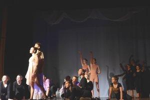 Účastníkom prehliadky bude aj Tanečné divadlo Shadow of Music.