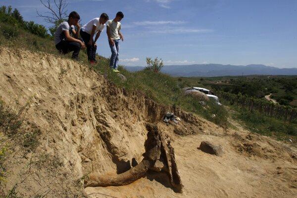 Skamenelina prehistorického slona pri obci Dolni Disan v Macedónsku.