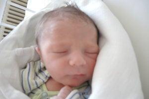 Adam Turek (3150 g, 50 cm) sa narodil 17. apríla Monike a Markovi z Nového Mesta nad Váhom. Z bračeka má radosť 7-ročná Evička.