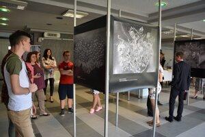 Apokalypsa na výstave vo foyer Úradu ŽSK. Teraz si ju môžeme pozrieť v Turčianskej knižnici.