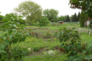 Takto vyzerali záhradky na Chrenovej v čase, keď sa o výstavbe len hovorilo.