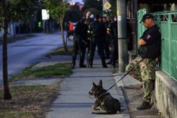 Fanúšika pohrýzol policajný pes Podľa polície to bolo vporiadku.Ilustračné foto: TIBOR SOMOGYI