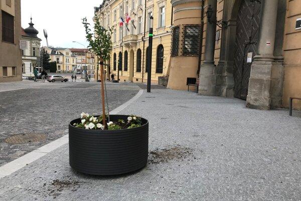 Kvetináče pred budovou Trenčianskeho múzea.