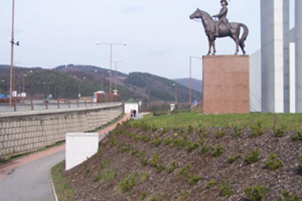 Pri Hurbanovej soche v Budatíne opäť niekto kradne sadenice kosodreviny.