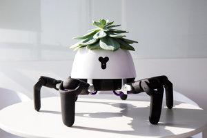 Robot HEXA upravený tak, aby mohol na chrbte niesť rastlinu a reagovať na jej potreby.
