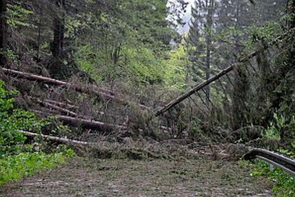 Silný vietor spôsobil v máji minulého roku kalamitu v lese pri Pribiši. Popadané stromy zahatali cestu do Oravského Podzámku.