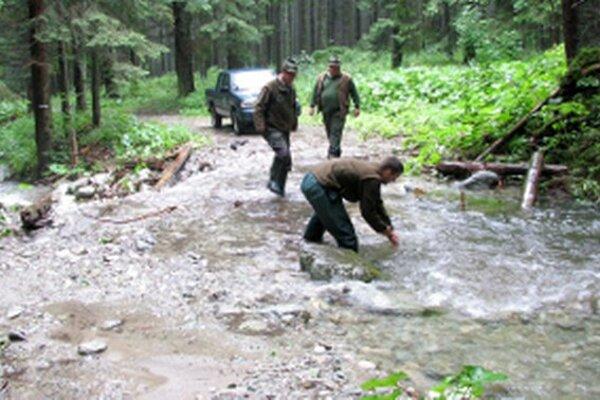 Povodne lesné cesty takmer každý rok poničia.