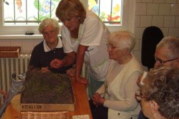 Z nazbieraných byliniek si dôchodcovia navaria voňavý čaj.