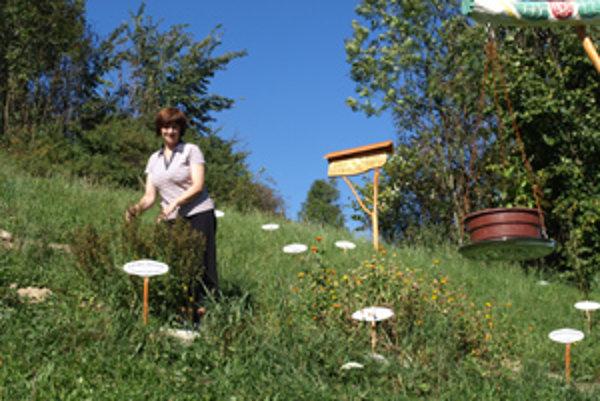 Beáta Bedrichová sa pestovaniu byliniek nevenuje dlho. Snívala však o tom roky.