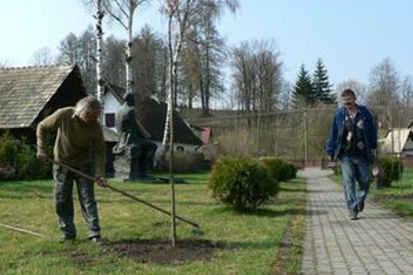 V parku Martina Kukučína v Jasenovej nahradili staré hlohy stromy javora. Špeciálna odroda si sama vytvorí korunu a nerastie do výšky.