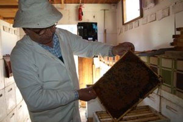 Na veterinárnej a potravinovej správe sa najčastejšie registrujú včelári.