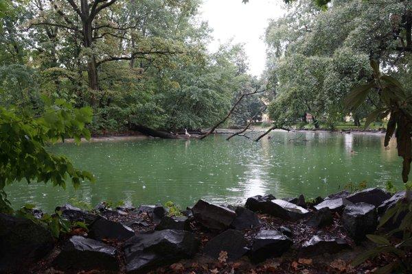 Jazierko v parku sa stalo miestom tragédie.
