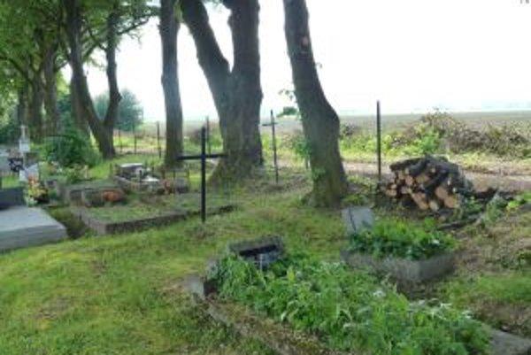 Padajúce konáre na cintoríne na sídlisku Sever ničili hroby.