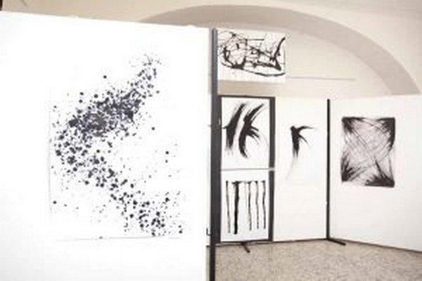 Jednou z tohtoročných výstav v Turčianskej galérii je prezentácia slovenských autorov ocenených na Bienále kresby Plzeň.