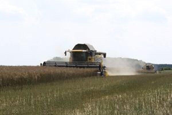 Turčianski poľnohospodári zbierali obilie približne na 7 300 hektároch.