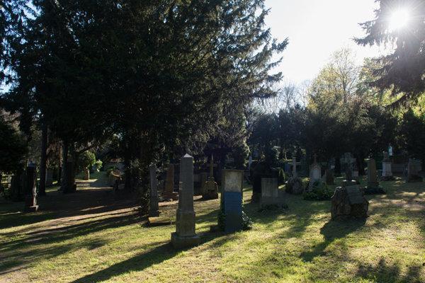 Cintorín pri Kozej bráne