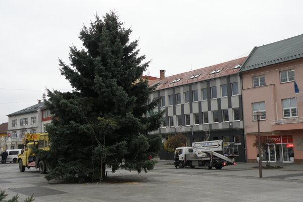 Na prievidzskom námestí už stojí vianočný stromček.