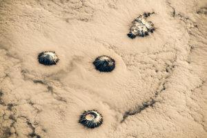 Sopky Kurilských ostrovov vytŕčajú ponad oblaky.