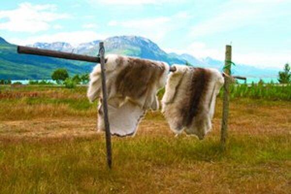 So začiatkom novej sezóny rozbehnú liptovskomikulášski poľovníci v máji zaujímavý projekt, ktorým chcú motivovať ostatných kolegov z celého Slovenska.