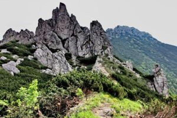 Na novej trase návštevníci uvidia aj lesnícky zaujímavé a rôzne lesné porasty, nebudú chýbať vyhliadky na okolitú krajinu.