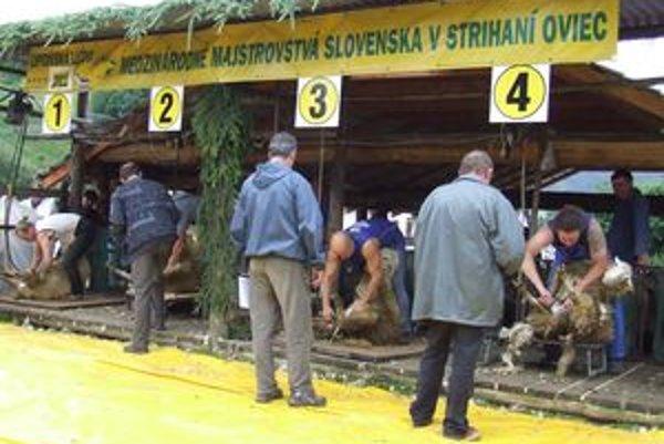 Výkony strihačov hodnotila odborná porota. Vpravo  majster Slovenska Igor Fongus.